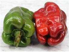 Pepper-Doux-DEspagne-PP138-web