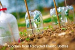 plastic-bottle-cloches
