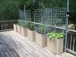 Garden cages2