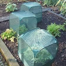 Garden cages3